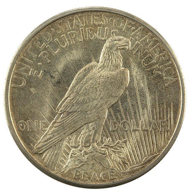 1921 Peace Dollar Reverse